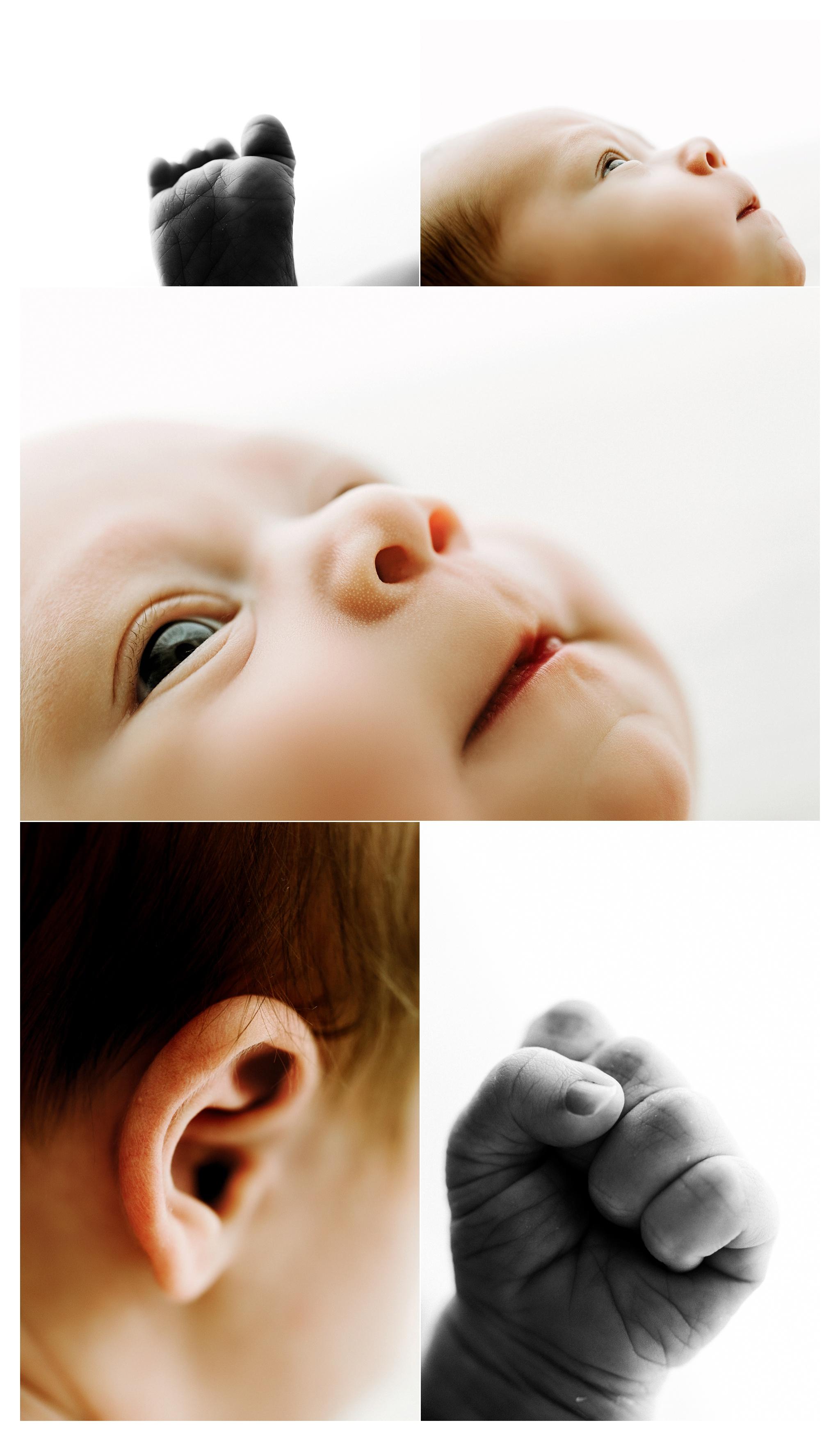 Newborn Photography Portland Oregon Sommessa_2059.jpg