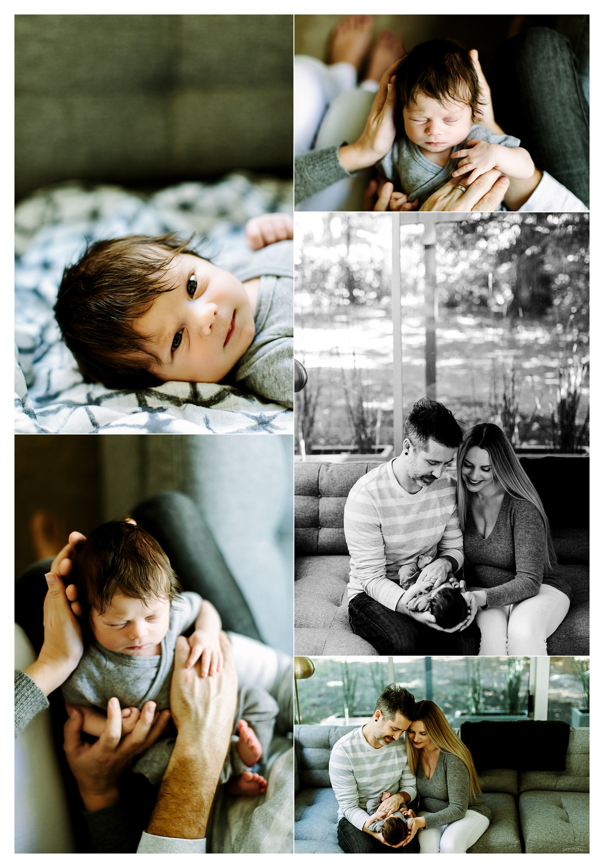 Portland Oregon Newborn Photographer Sommessa_2406.jpg