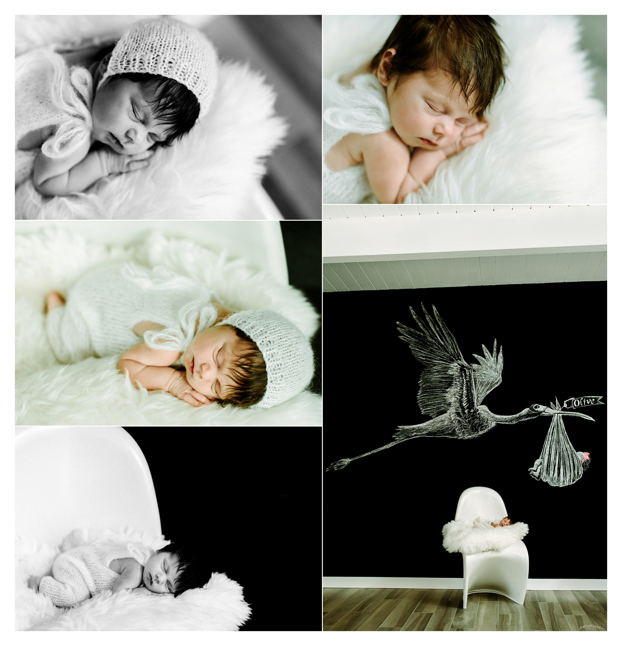 Portland Oregon Newborn Photographer Sommessa_2411.jpg