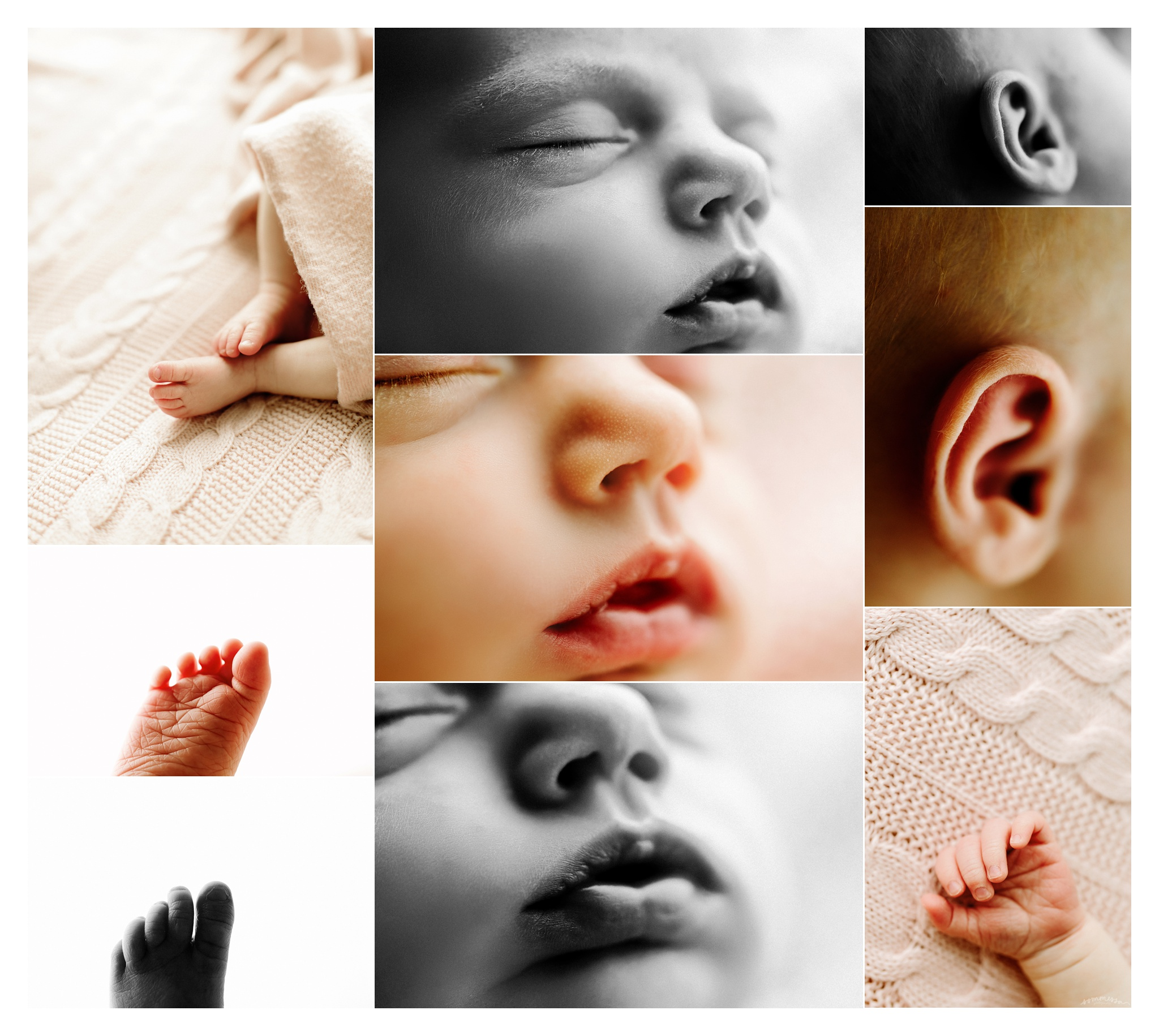 Portland Oregon Newborn Photographer Sommessa_2422.jpg