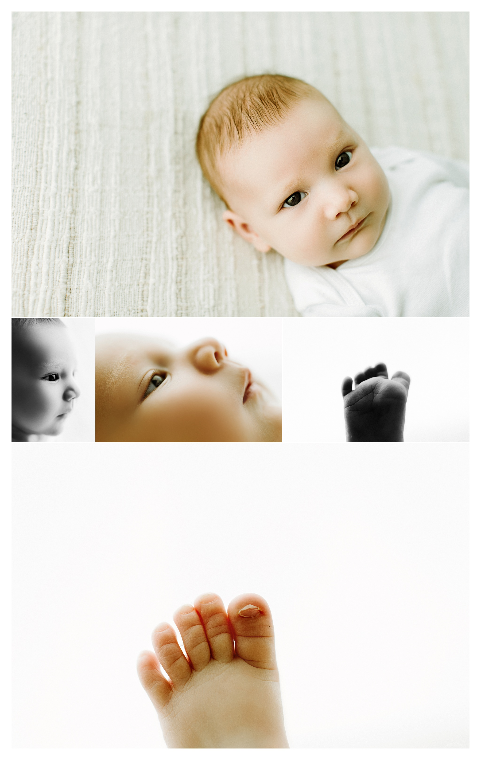 Portland Oregon Newborn Photographer Sommessa_2430.jpg