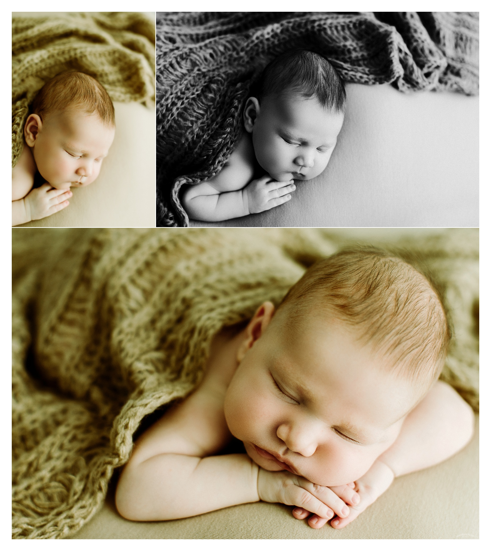 Portland Oregon Newborn Photographer Sommessa_2432.jpg