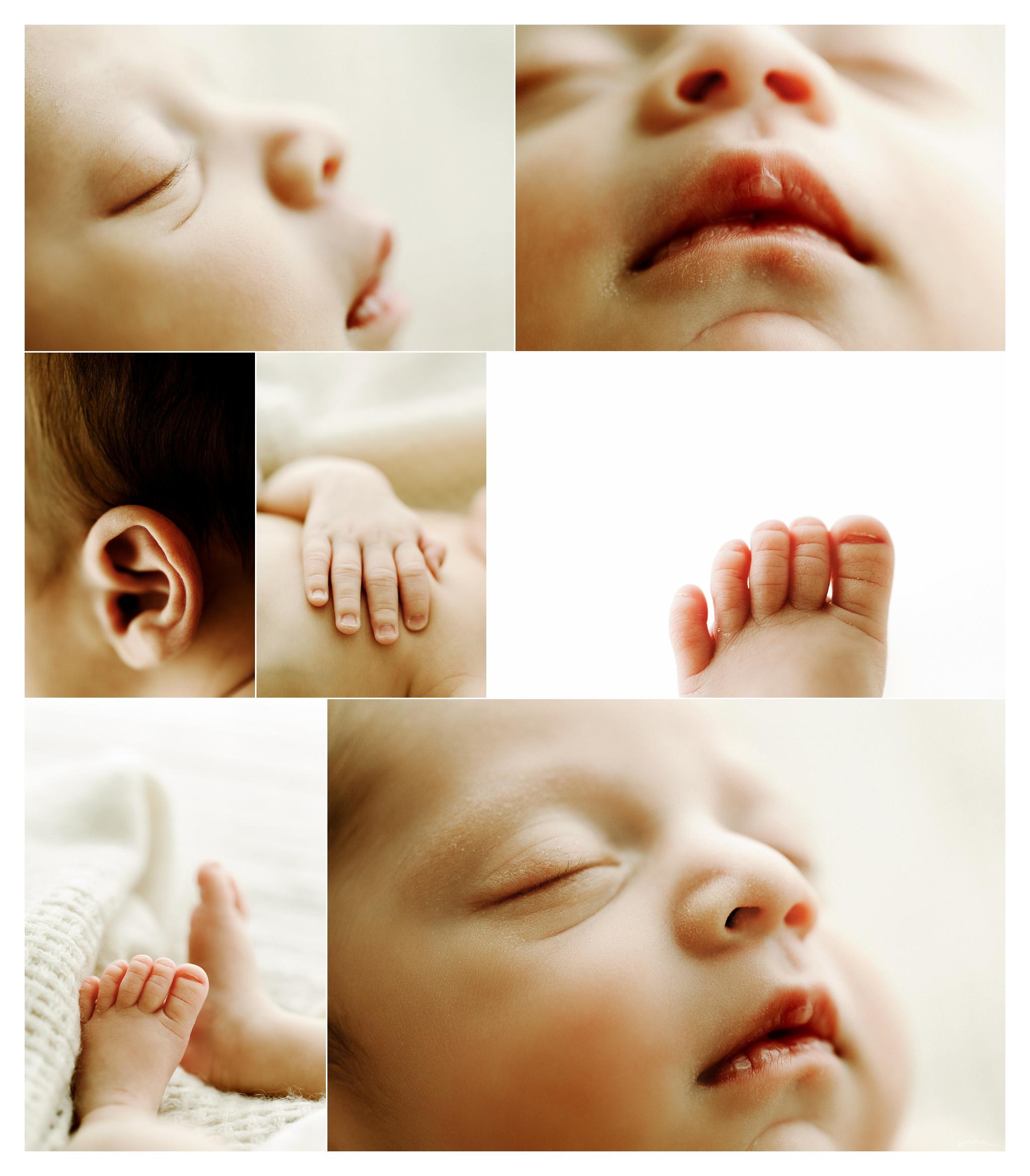 Newborn Photographer Portland, Oregon Sommessa_2591.jpg