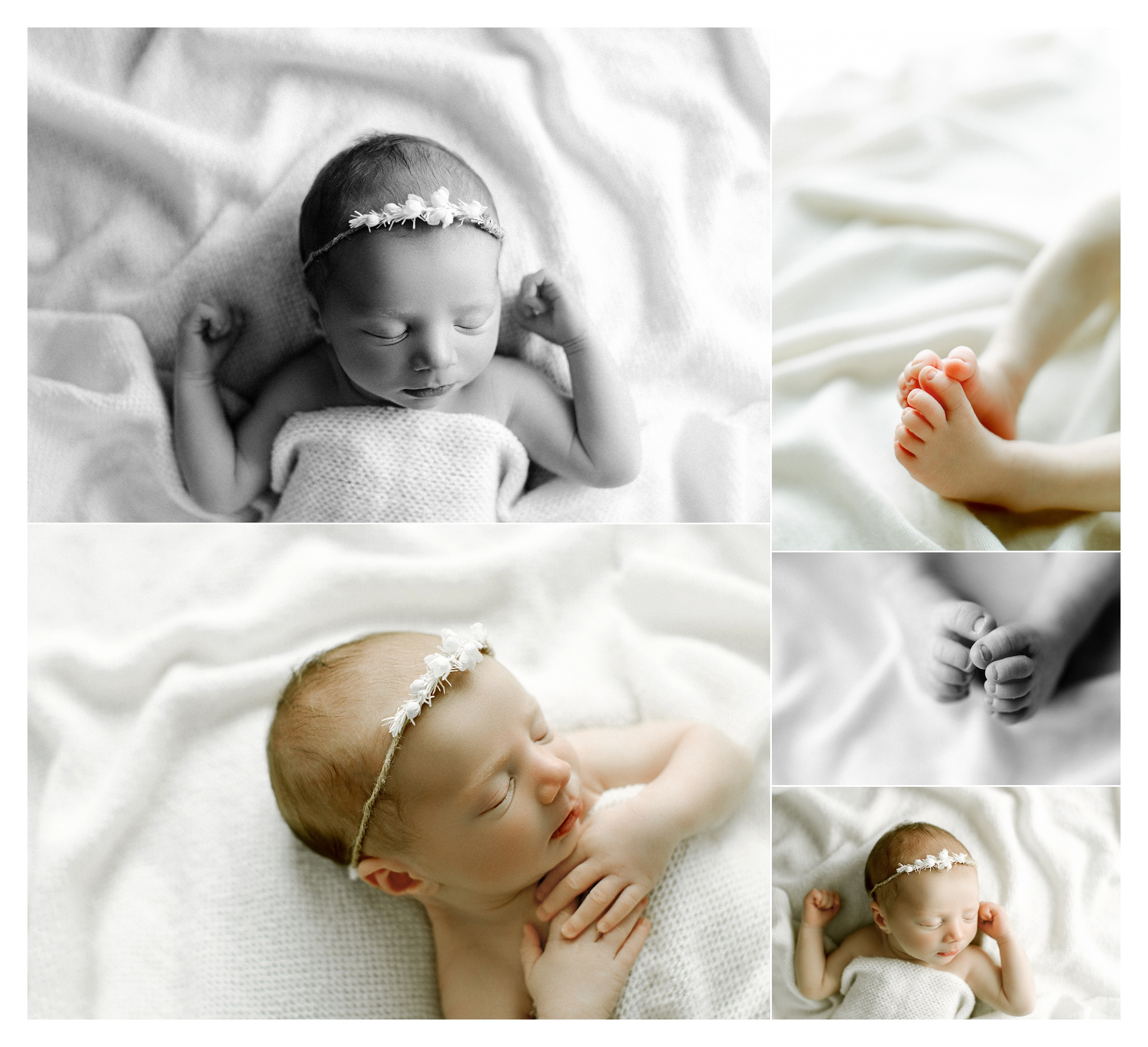 Newborn Photography in Portland, Oregon Sommessa_2767.jpg