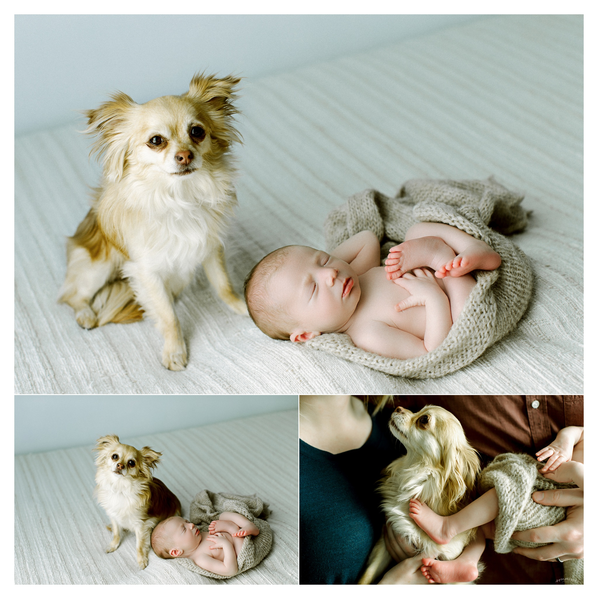 Newborn Photography in Portland, Oregon Sommessa_2772.jpg
