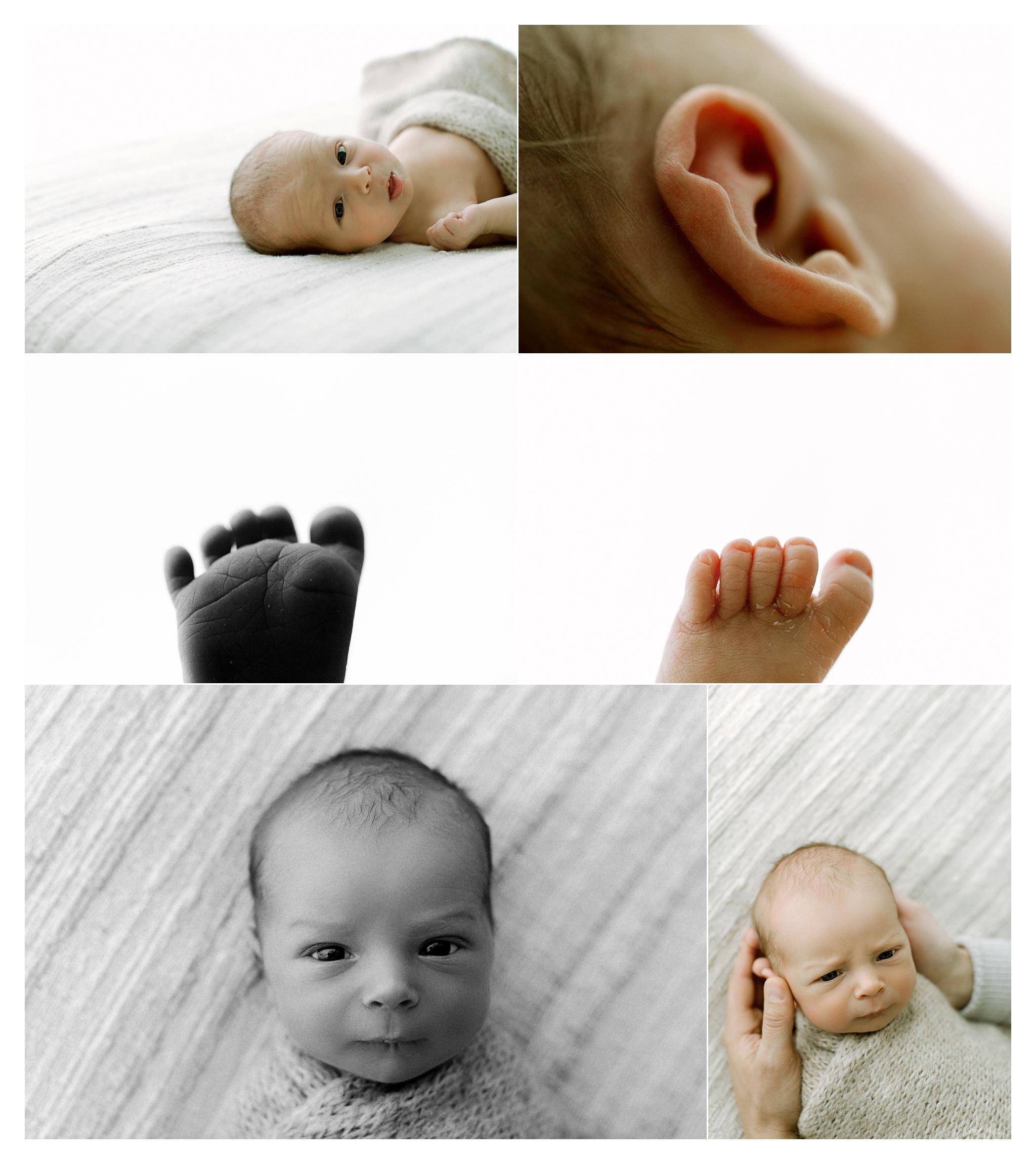 Newborn Photography in Portland, Oregon Sommessa_2789.jpg