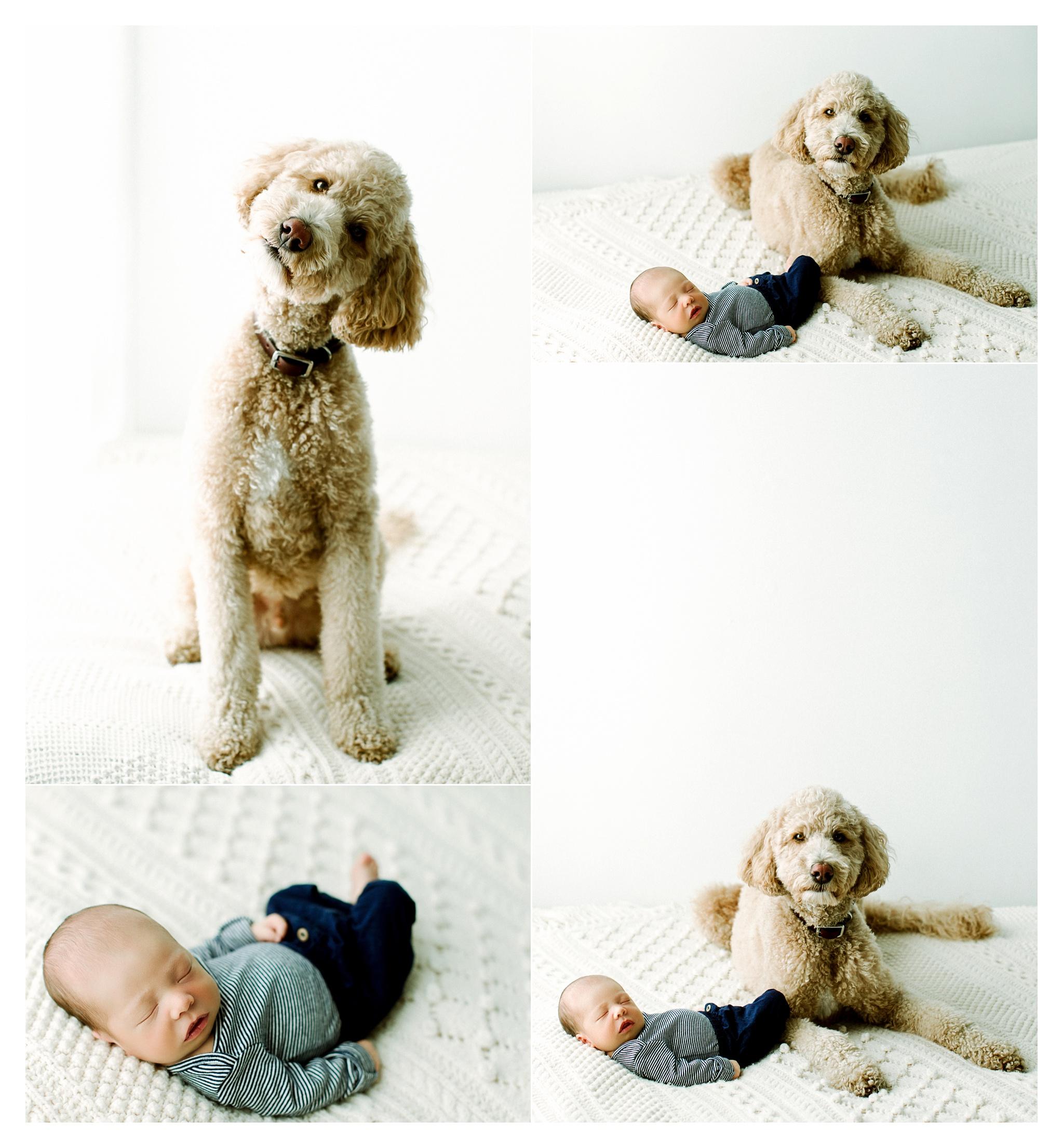 Newborn Photography in Portland, Oregon_2954.jpg