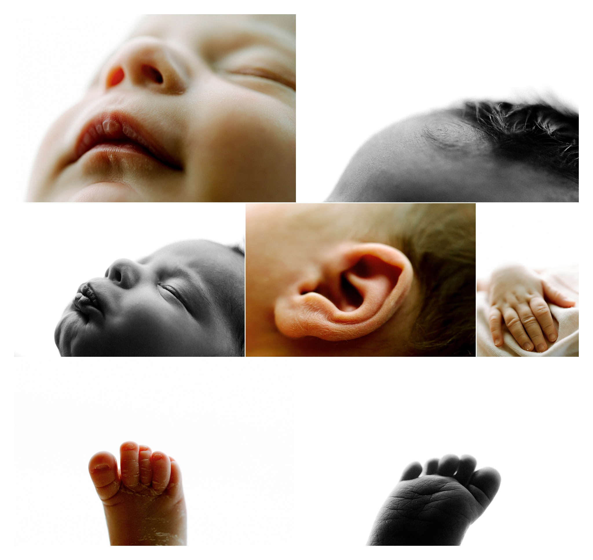 Newborn Photography in Portland, Oregon_3070.jpg