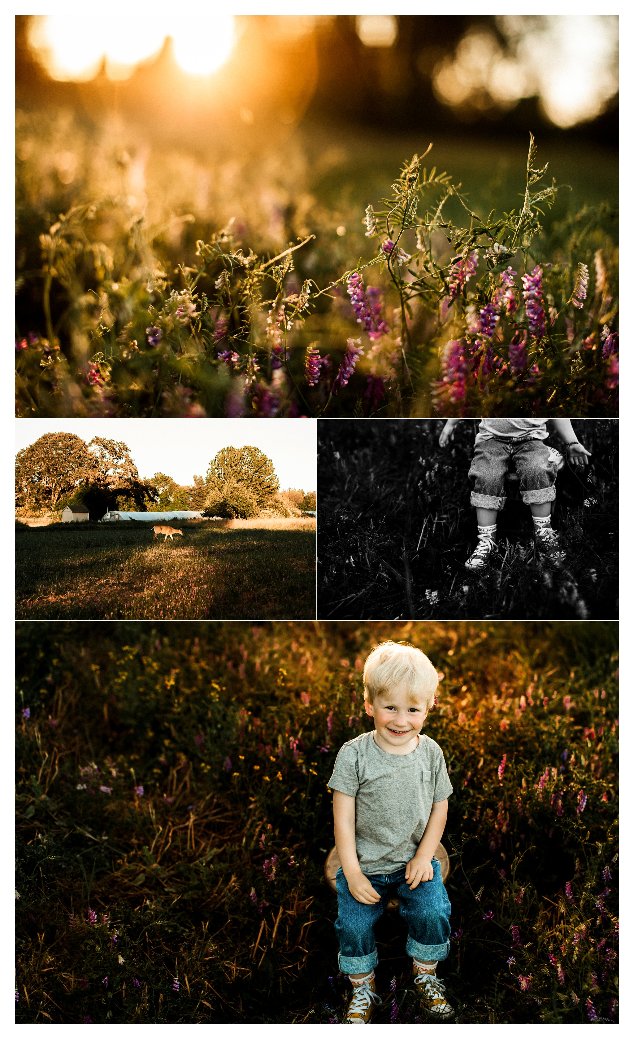 Family Photographer in Portland, Oregon_3114.jpg