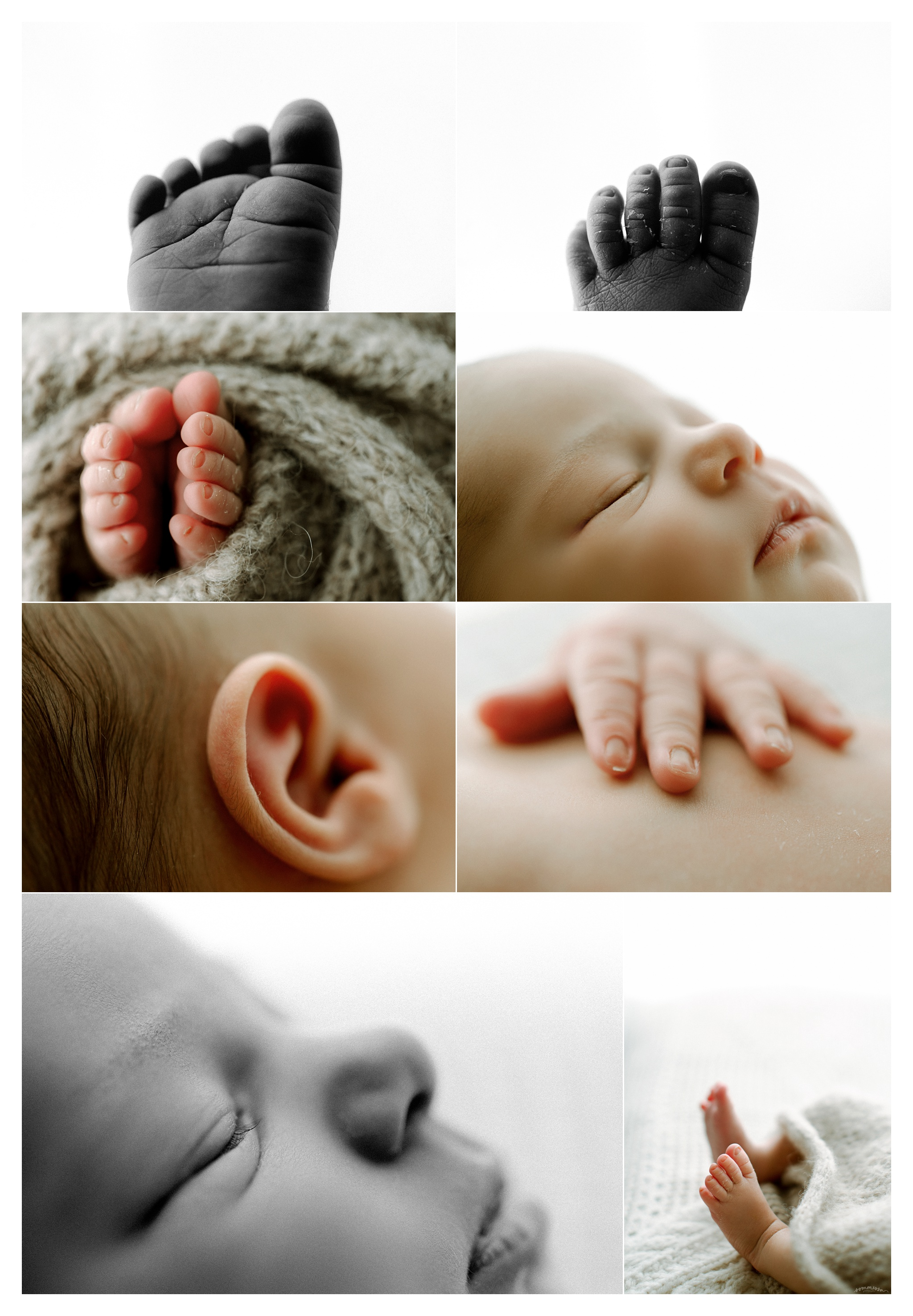 Newborn Photographer Portland, Oregon_3221.jpg