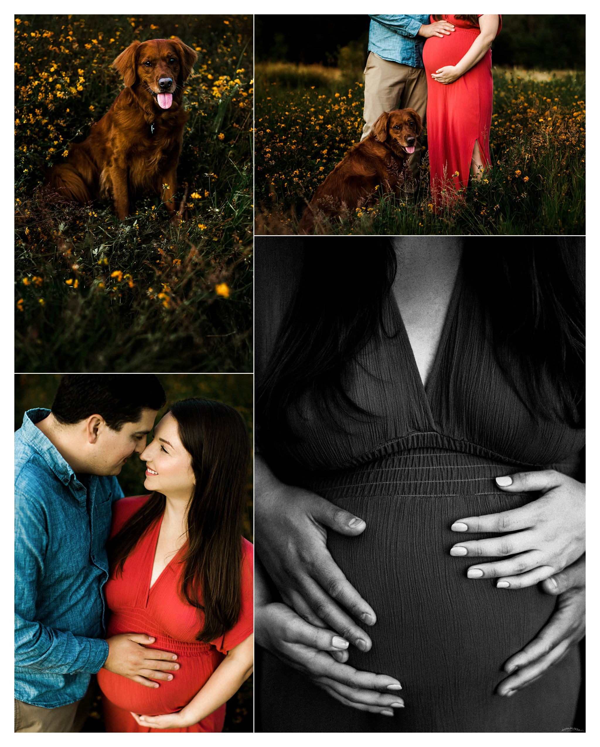 Maternity Photographer Portland, Oregon_3230.jpg