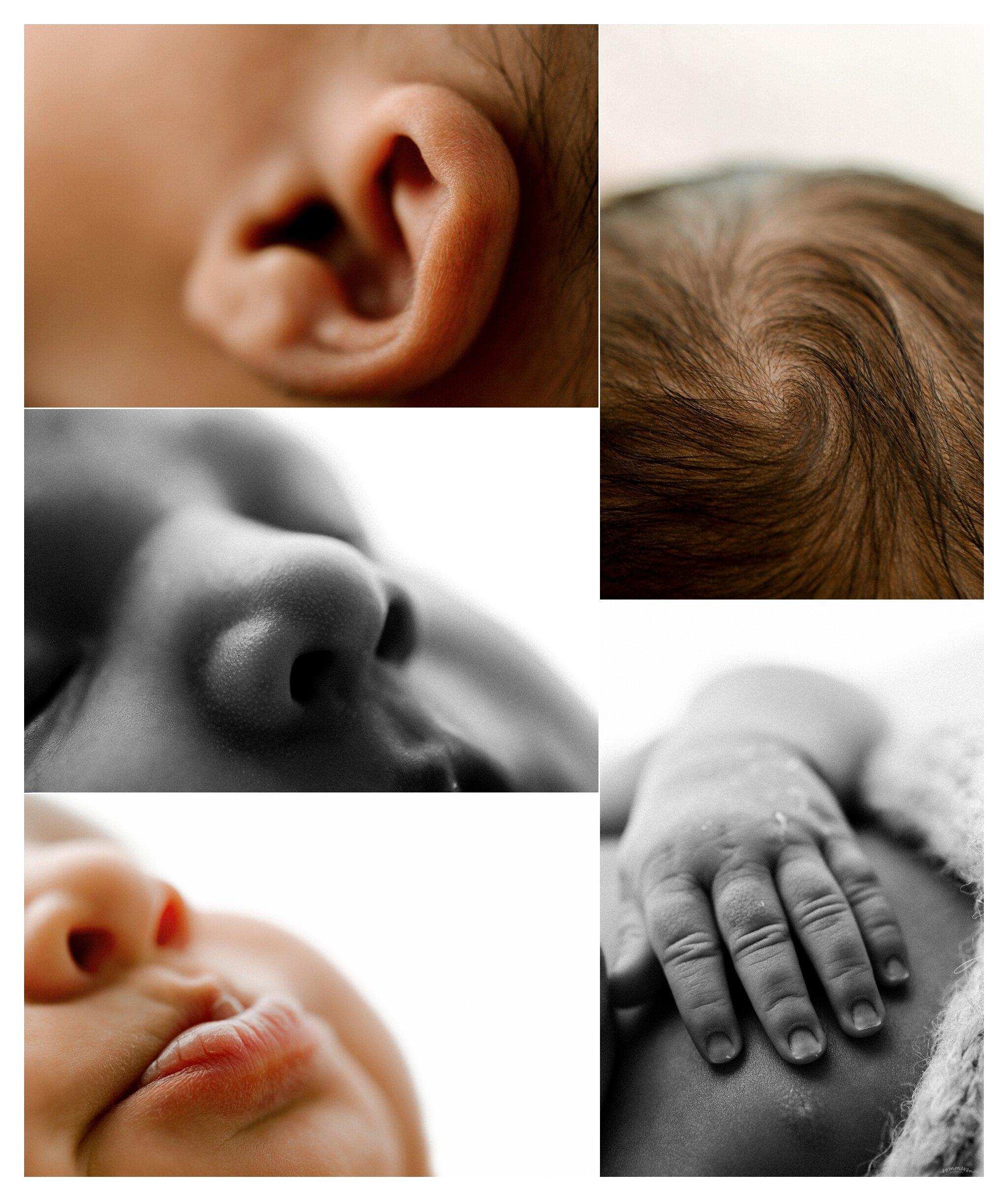 Newborn Photographer Portland, Oregon_3390.jpg