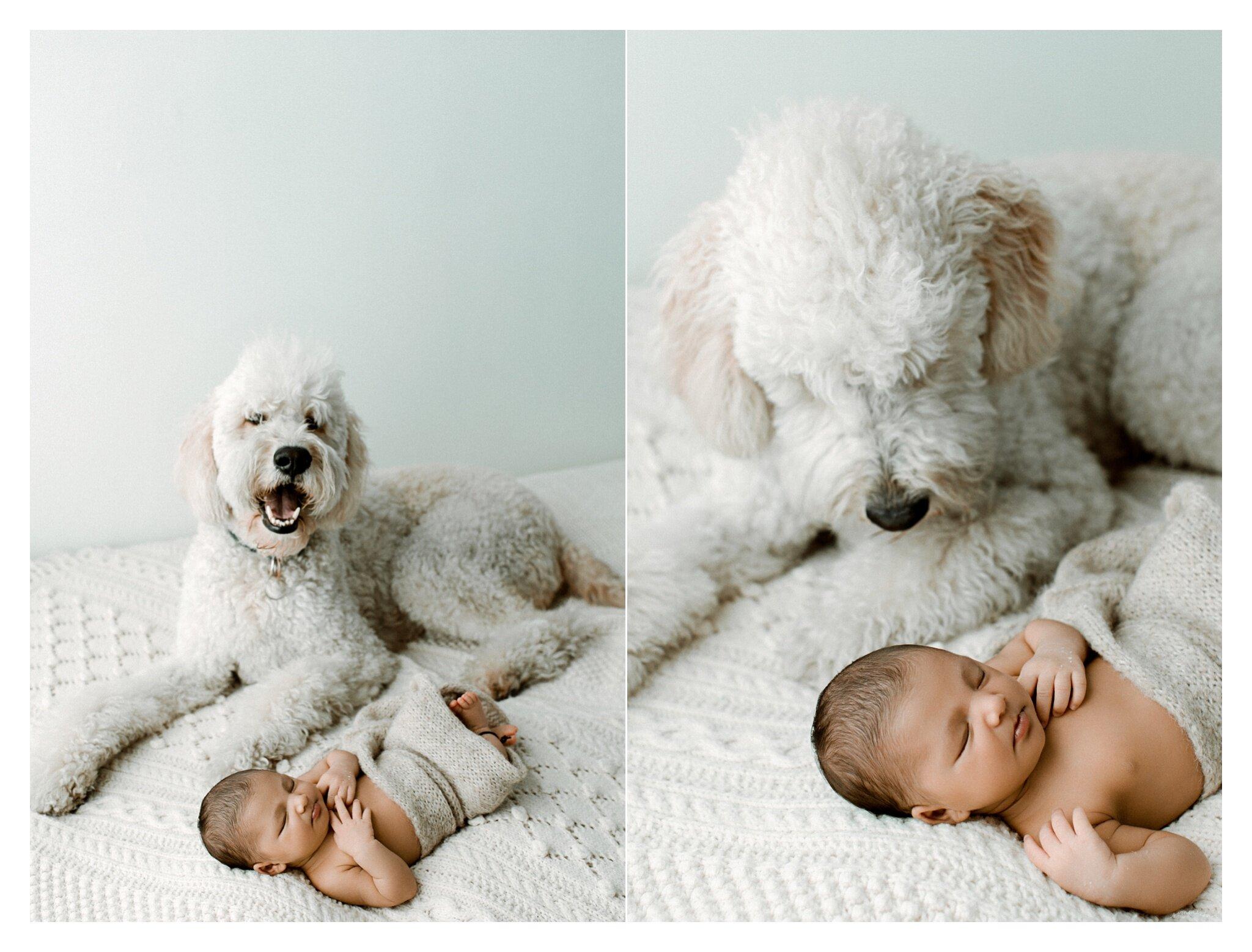 Newborn Photographer Portland, Oregon_3393.jpg