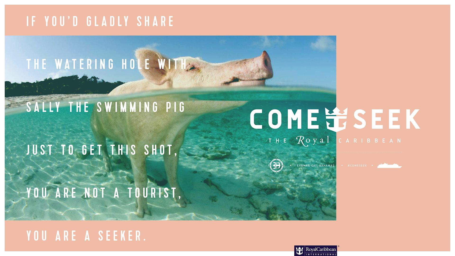 come_seek_sp_d.jpg