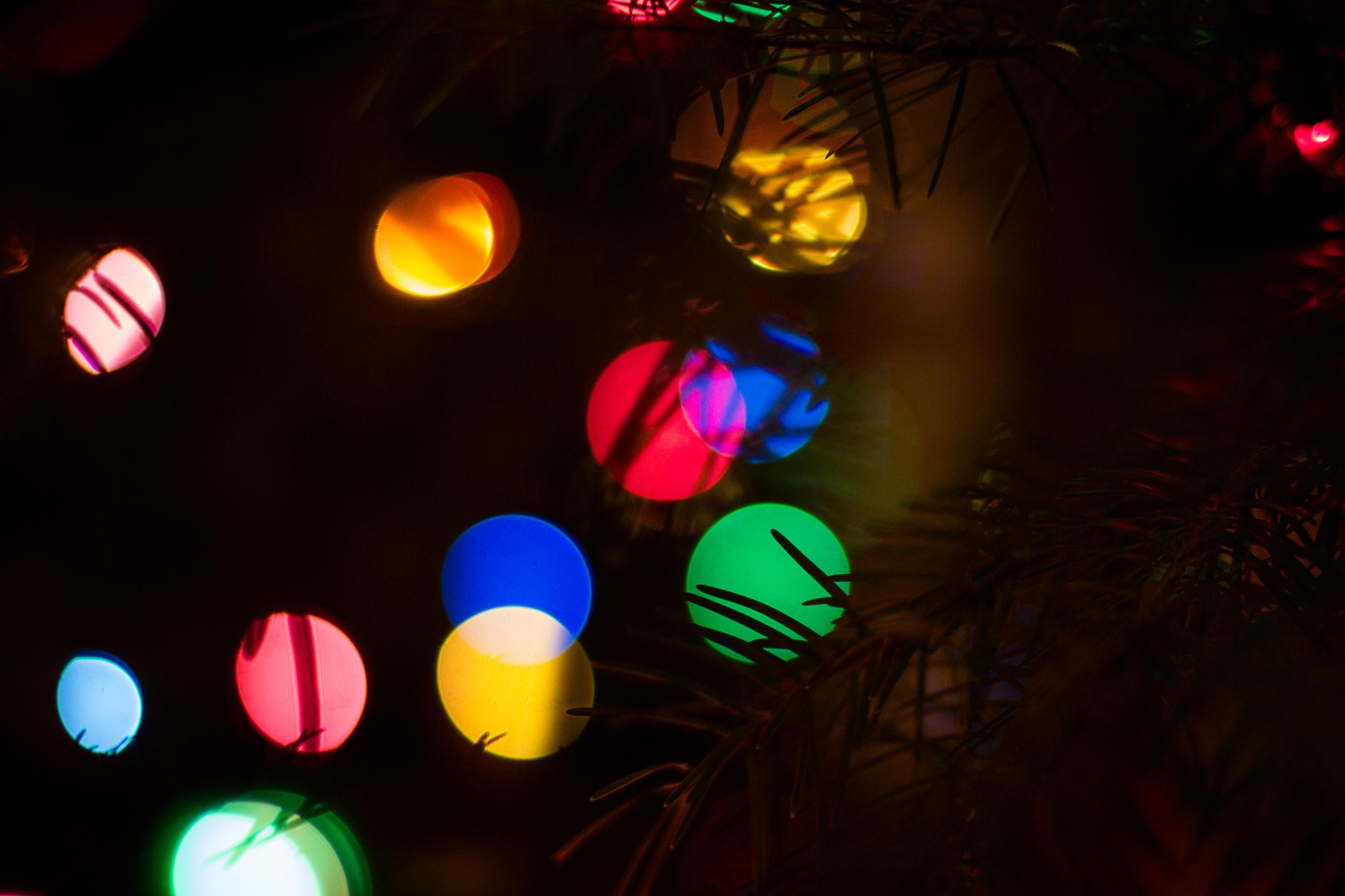 Christmas lights2 for web.jpg