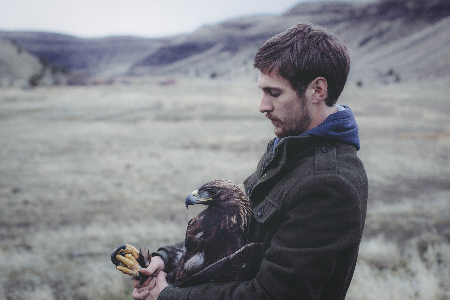 Jasper With Adult Male Golden Eagle