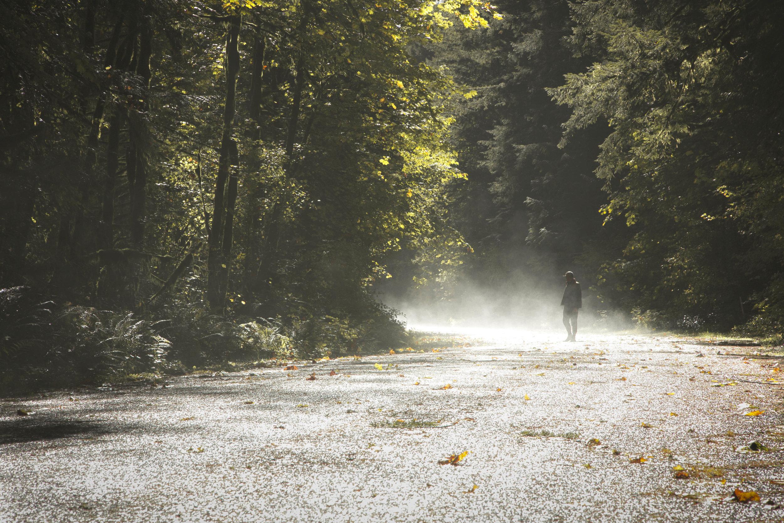 Kyle_fog_road.jpg