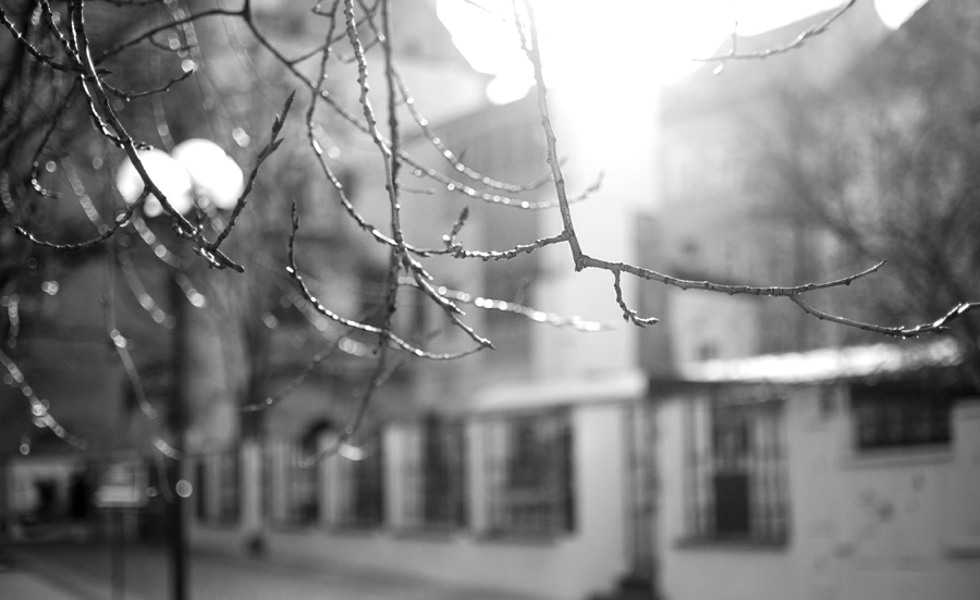 sonnenschein-im-winter-in-prag