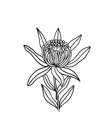 Jemima Richards_Branding_Floral Graphic 01_Filled_FFFFFF-000000-32.png