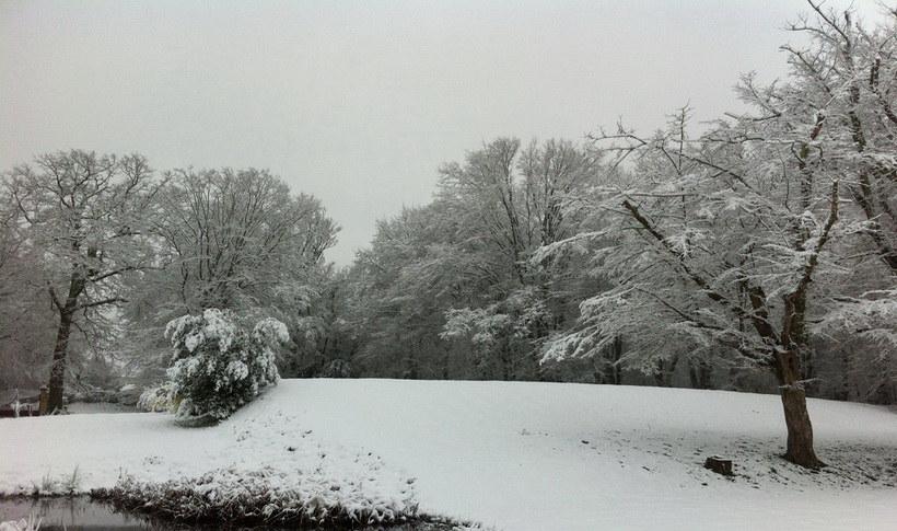 Front garden snow II.jpg
