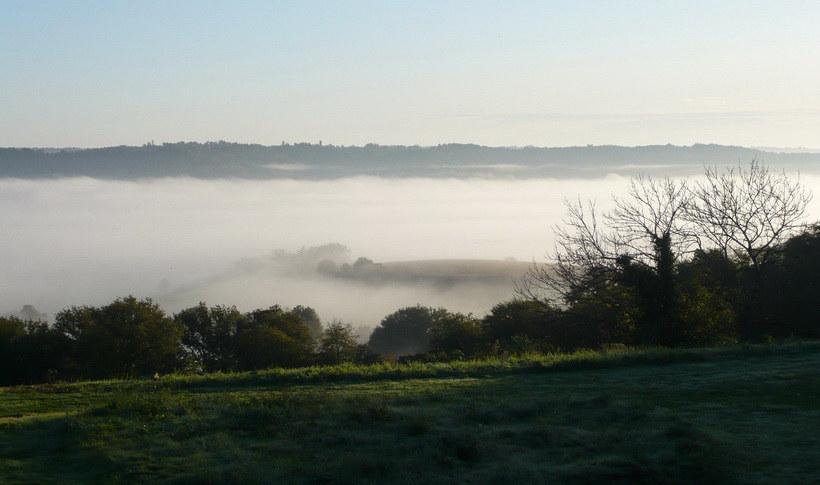 Misty view.jpg