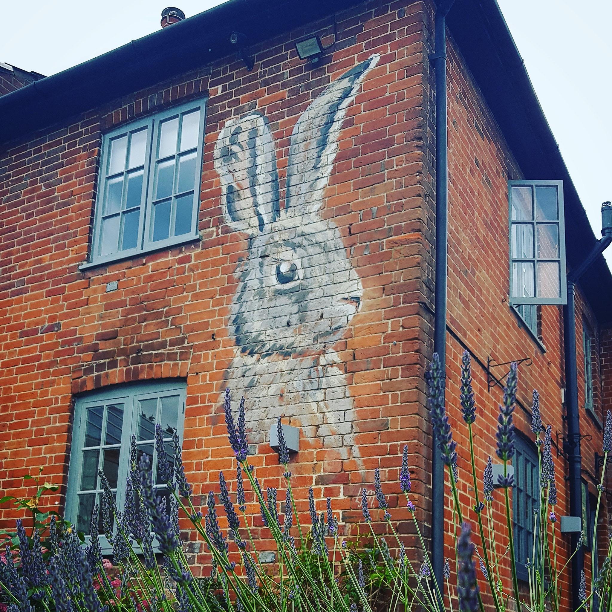 The Pub Bunny.JPG