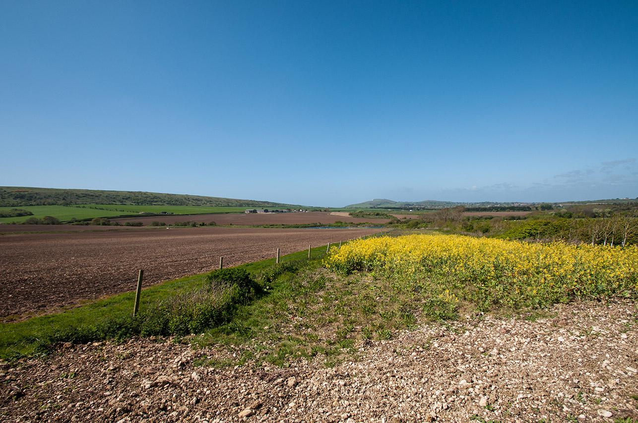 Tapnell-Farmland.jpg