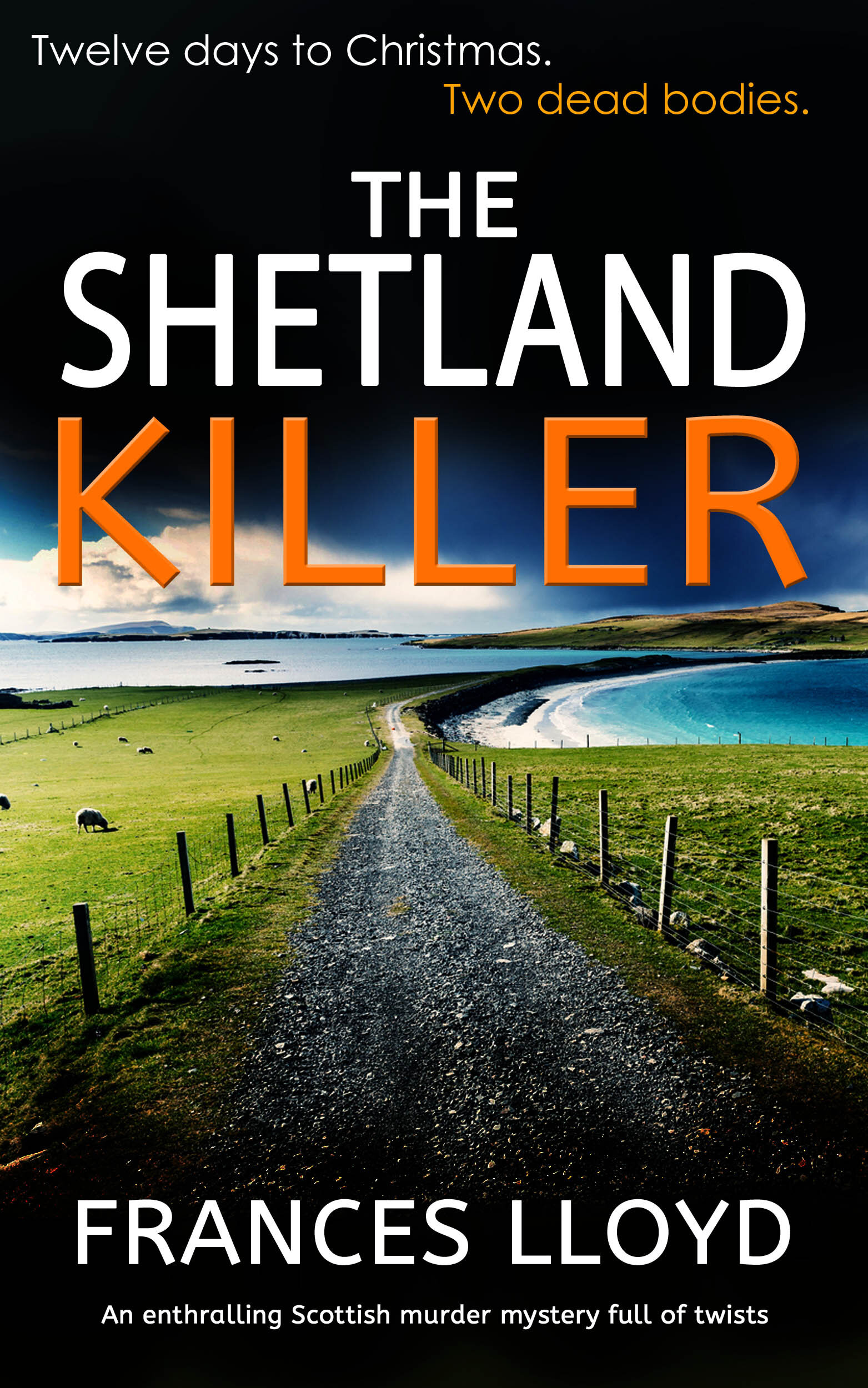 The Shetland Killer publish.jpg