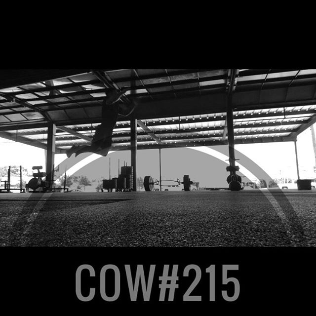 COW#215 ••• This one is about staying quick and explosive even when you're starting to tap out. ••• 6x: -4 Deadlifts -8 ME Weighted Vertical Jumps -2 ME Broad Jumps *2.5min Rest Between Sets ••• Notes: -The deadlift weight should be about 55-60% of 1RM. This weight should be somewhat challenging but you should be able to move quickly. -Max effort vertical jumps while holding a KB with both hands and keeping arms straight. This will force power production from the legs. -Max effort broad jumps will be tough at the end of the set. You're now only moving your own body weight so stay aggressive and explosive - finish each set strong! ••• Questions? Drop them below. Otherwise, enjoy. . . . . . . . #tcs #traviscountystrength #LIFT #LIFT4women #strengthtraining #strengthandconditioning #strongman #gym #squats #austin #atx #simplenoteasy #leadfromthefront #totallysatisfied #cow