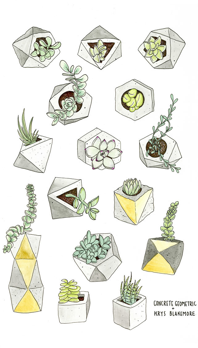 Succulent Art Blog Concrete Geometric