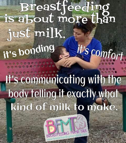 6 Ignorant Things People Say About Breastfeeding