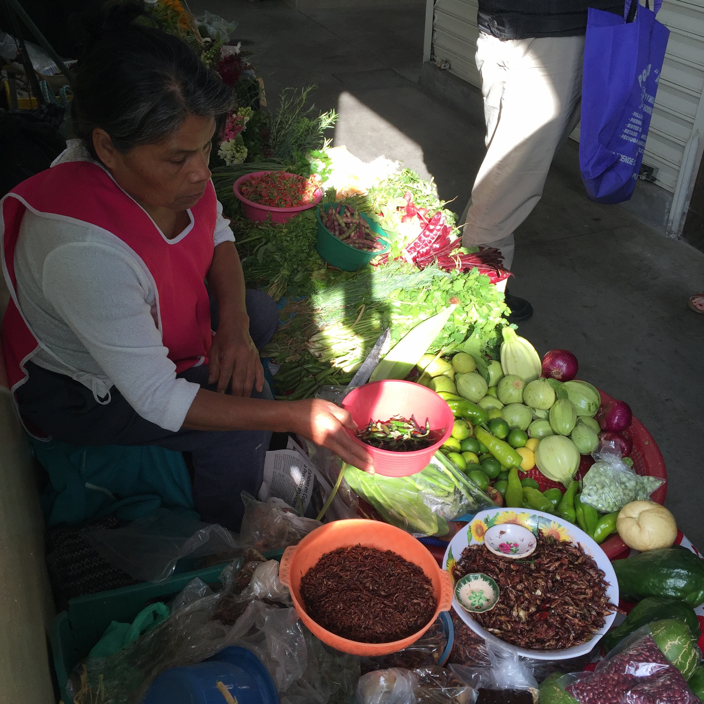 A vendor and her homegrown produce for sale at Mercado de la Merced (including dried crickets in the bottom of frame.)