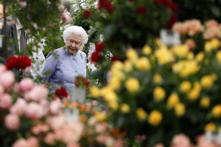 Queen Elizabeth II at the Chelsea Flower Show. Photo:  Prima