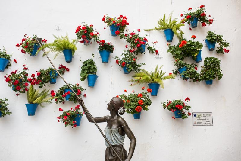 Cordoba is famous for it's potted flowers. Cordoba est connu pour des pots en fleurs décoratifs.