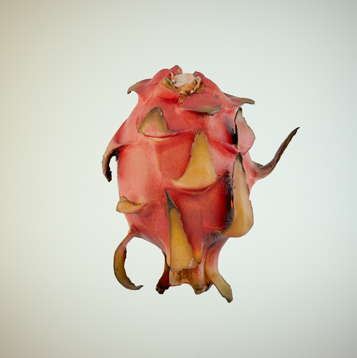 Render de un dragon fruit escaneado en 3D y renderizado en Arnold.