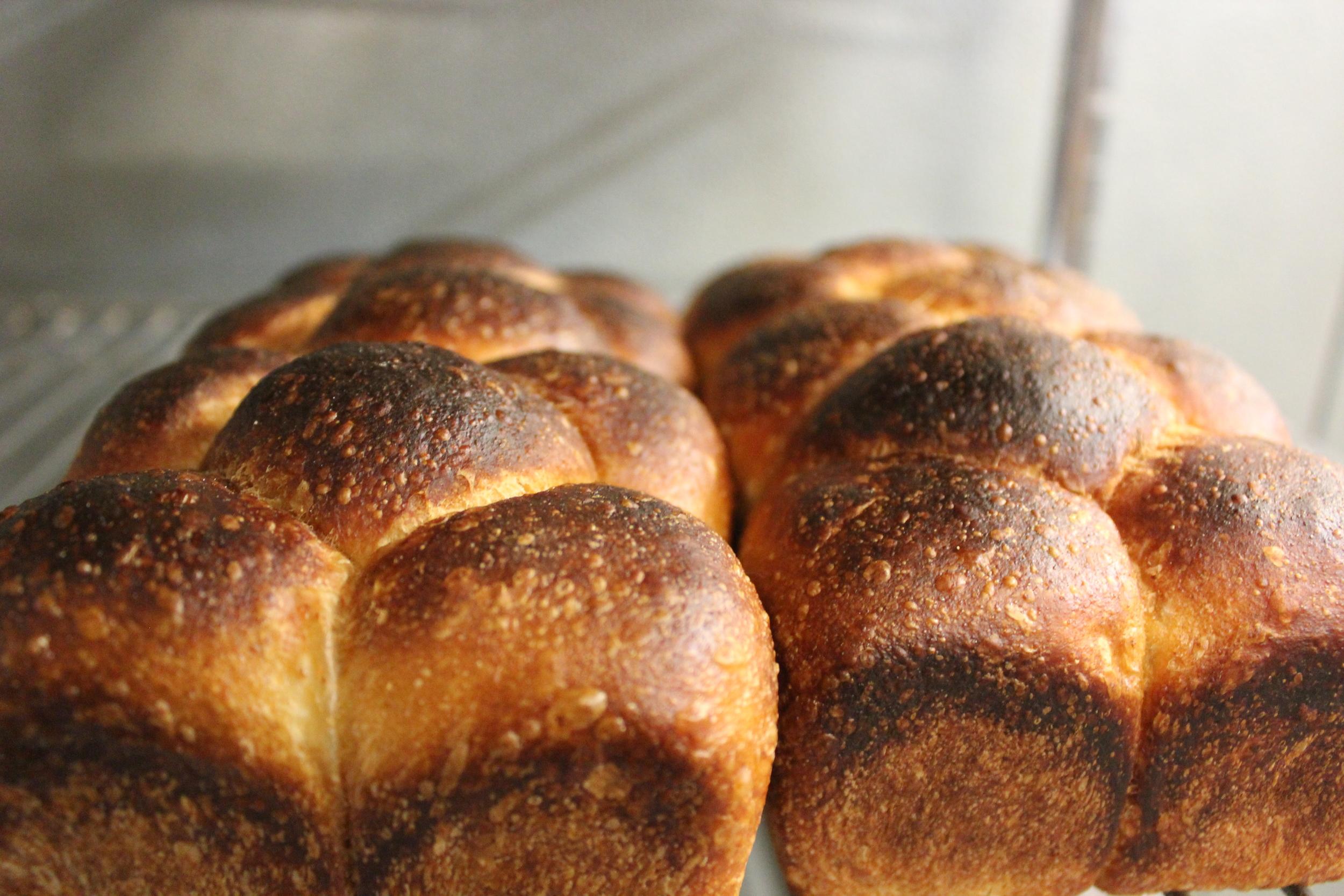 Dillon's fresh baked dinner rolls