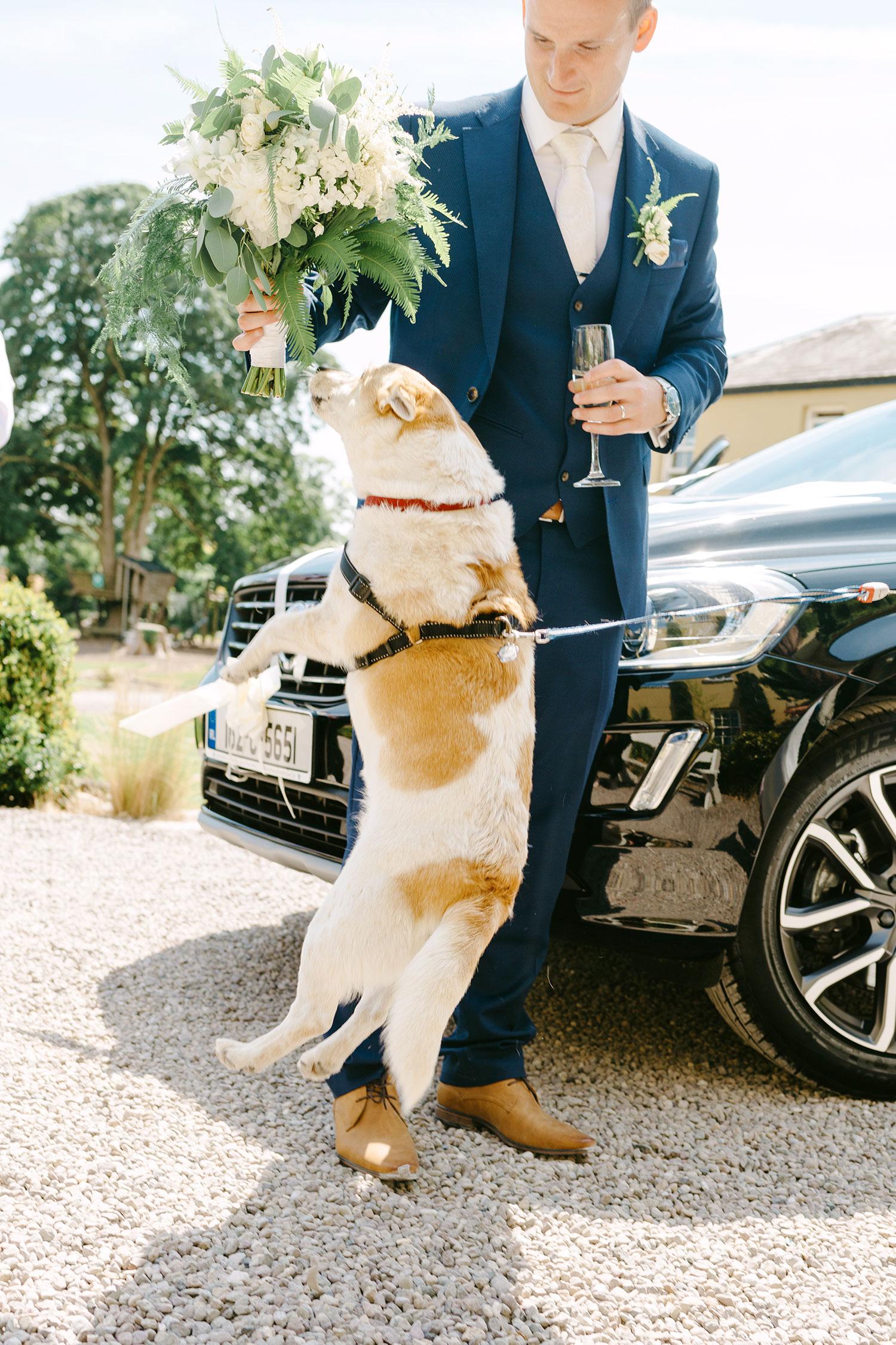 destination-wedding-photographer-ballinacurra-house-wedding-20180711_0043.jpg