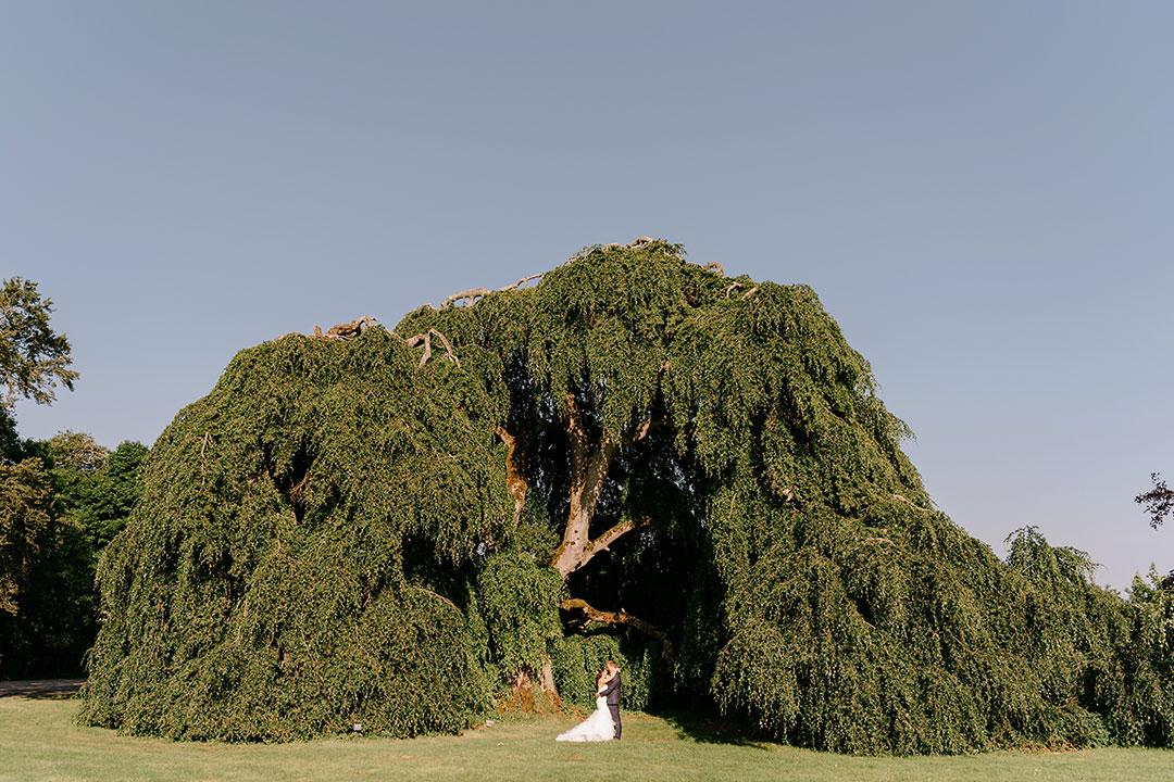 bellinter-house-wedding-photographer-0138_0138.jpg