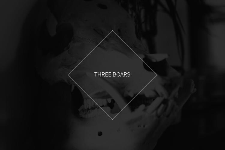 Threeboars-Title-Blog.jpg