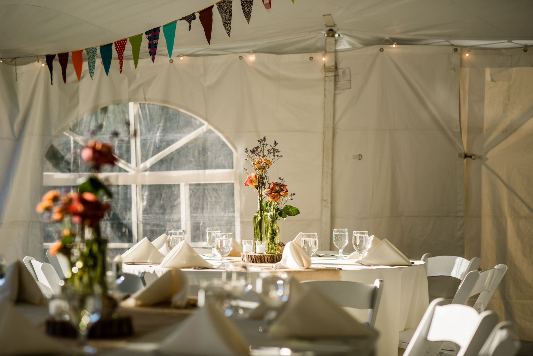 Stefy Hilmer Photography -wedding reception in tent.jpg