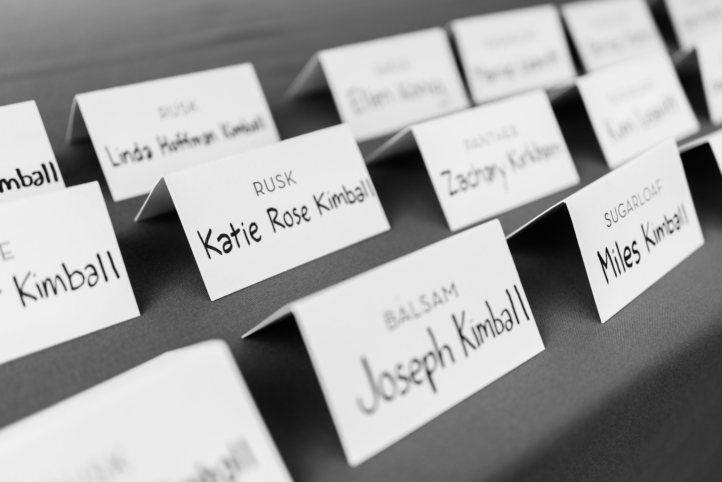 Stefy Hilmer Photography-place cards.jpg