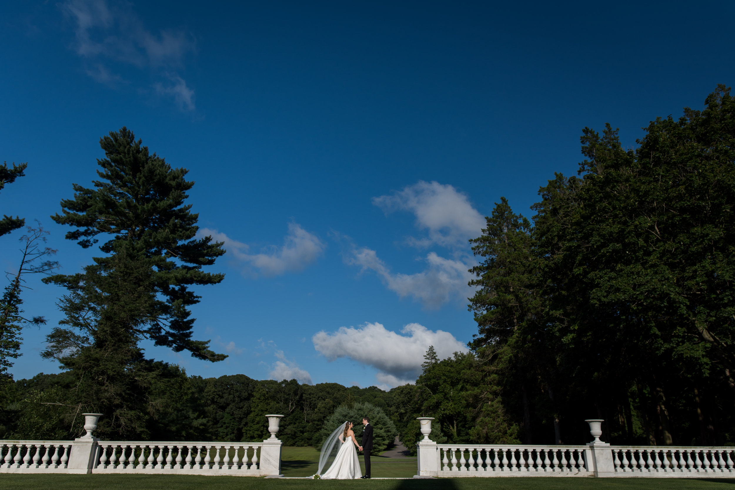 Stefy Hilmer Photography-scenery portrait with bride and groom.jpg