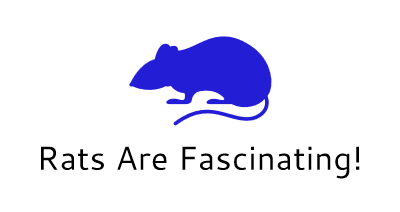 Rats In Common Language