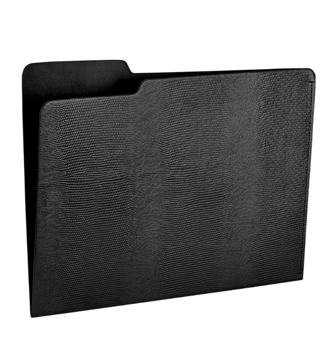 black file folder - lizard skin