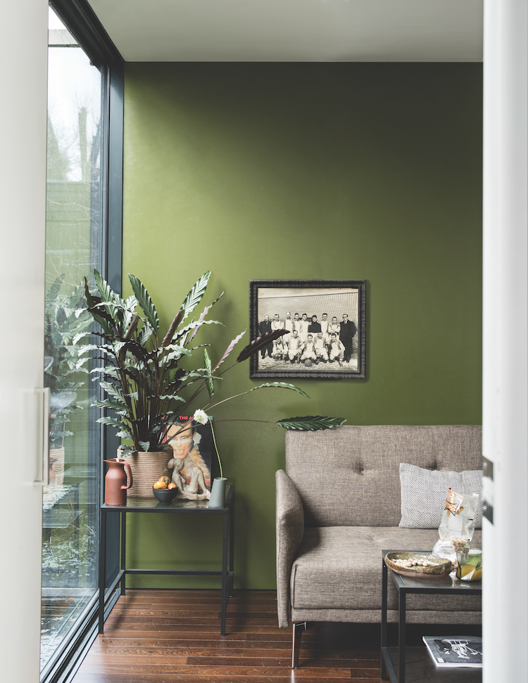 BANCHA 298 : This mid-century modern green is named after Japanese tea leaves, it provides a feeling of security.