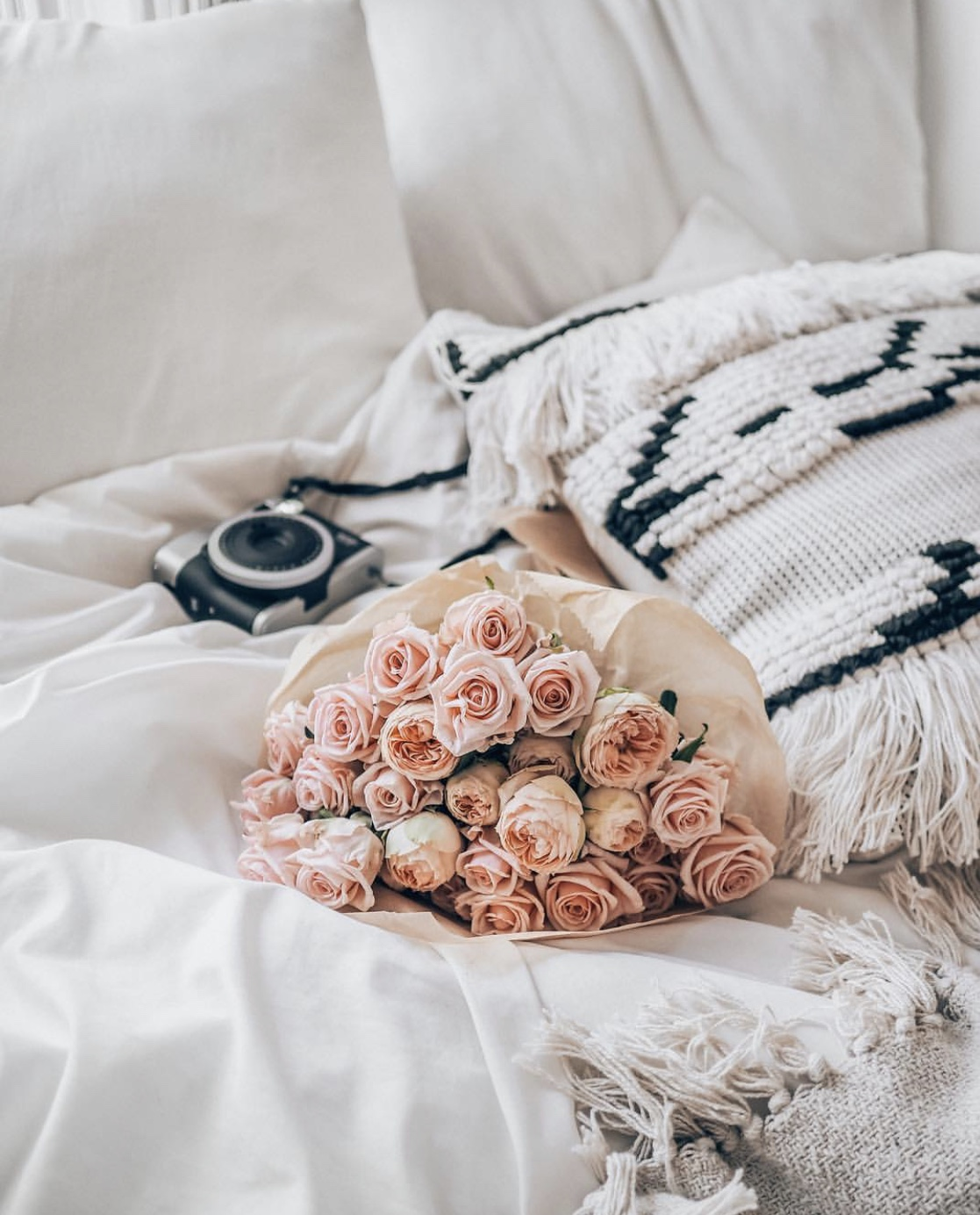 roses in bed