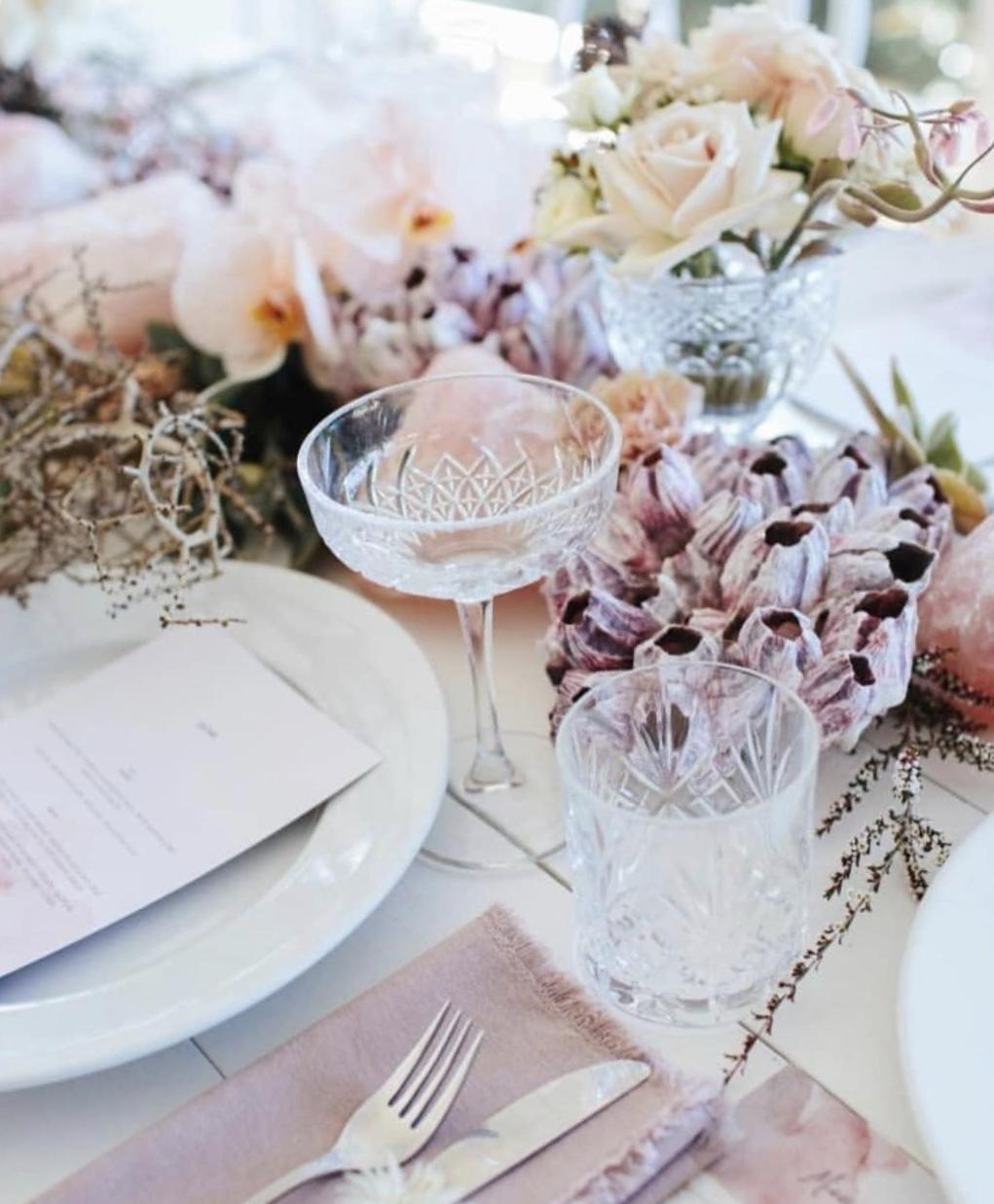 purple barnacle tabletop