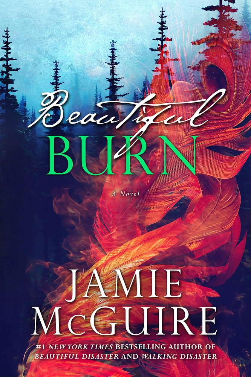 beautiful.burn.cover.jpg