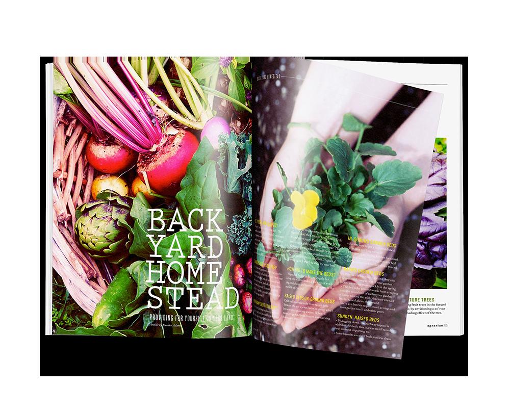 print_0002s_0000_magazine1.png