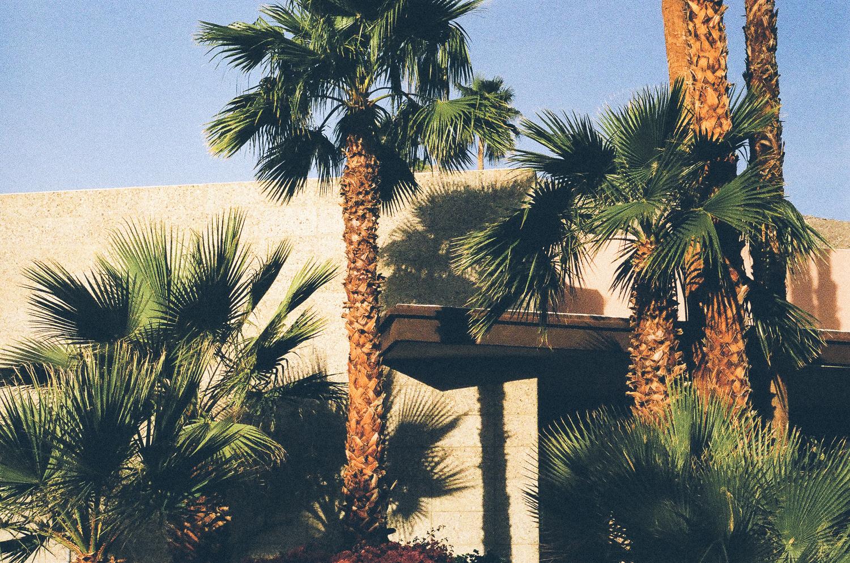 Palm Springs-5.jpg